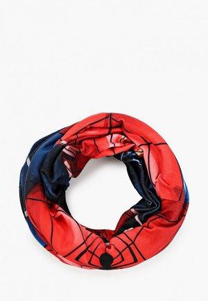 Снуд Buff Polar Spider-Man. Цвет: разноцветный