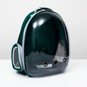 Рюкзак для переноски животных прозрачный, 31 х 28 42 см, сине-зелёный Пижон