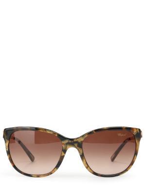 Солнцезащитные очки CHOPARD. Цвет: разноцветный